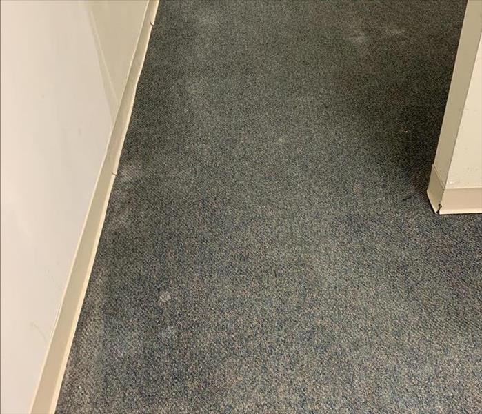 Carpet Prior to being cleaned